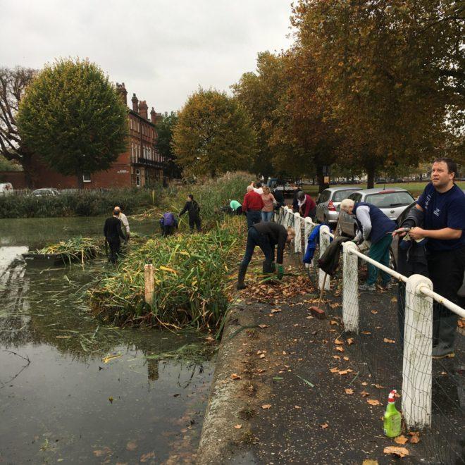 Kew Pond Work Day