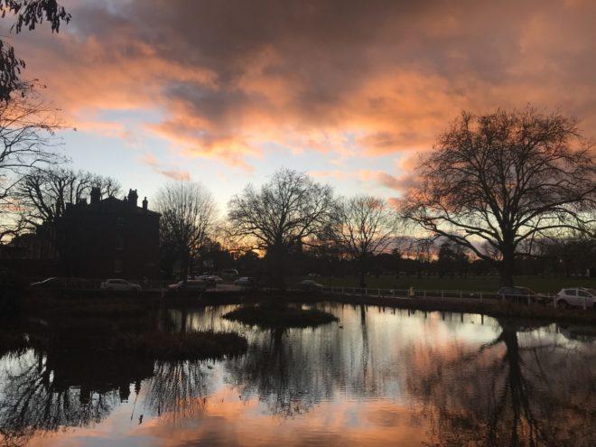 Kew Pond